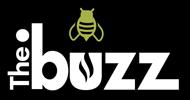 buzz registry dotStrategy Co logo